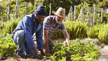 Benefits of a Community Garden