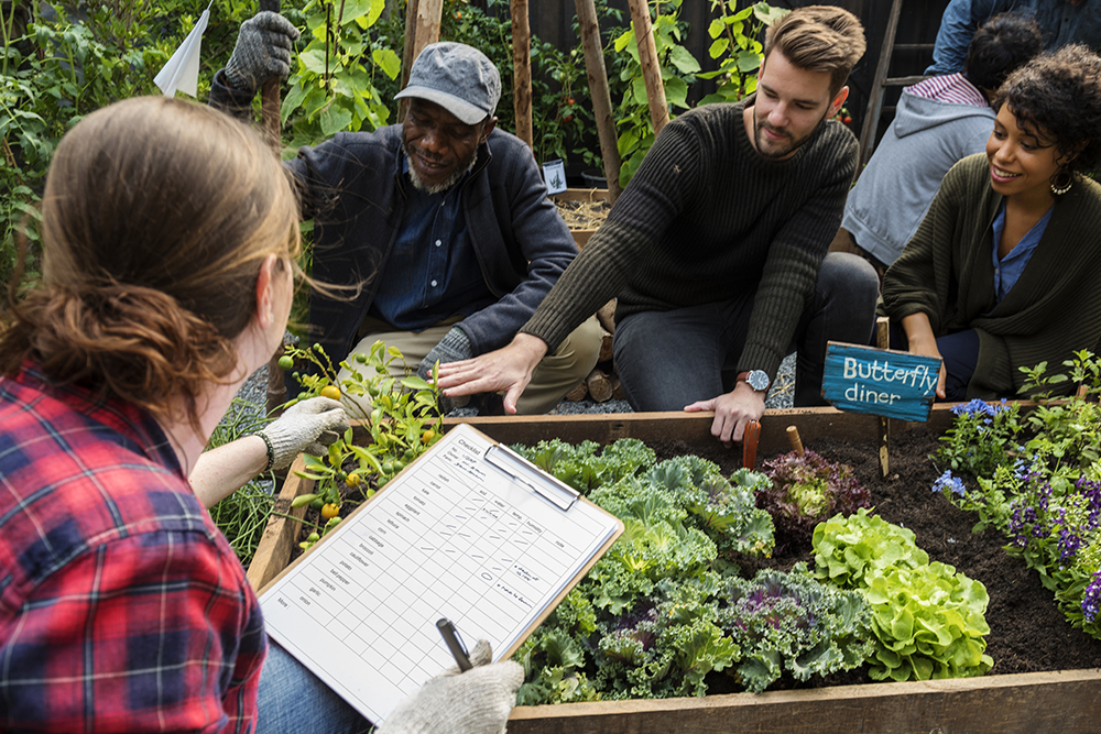 What is a community garden?